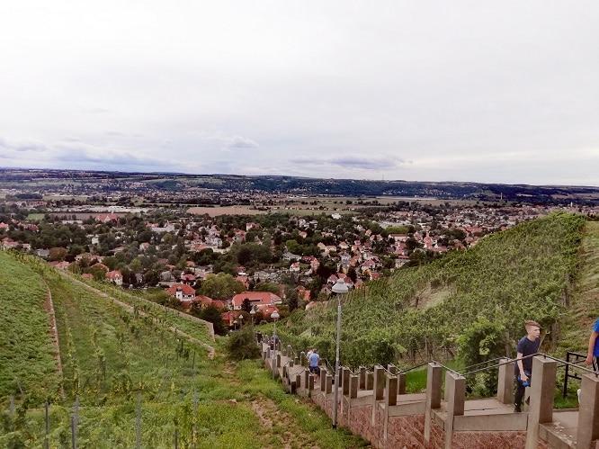 Tag des offenen Weinguts Teil III: Spitzhaustreppe Radebeul