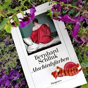 Abschiedsfarben Bernhard Schlink Rezension