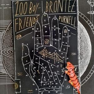 100 Boyfriends von Brontez Purnell